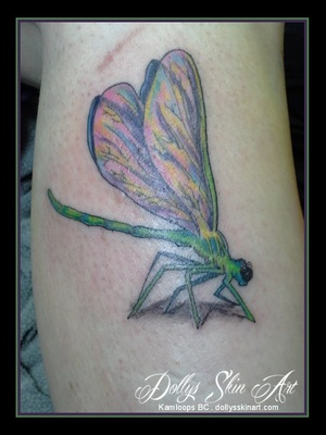 colour dragonfly tattoo